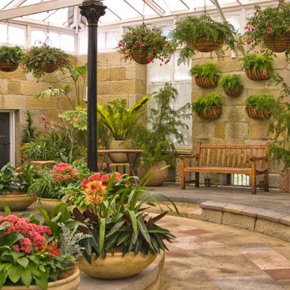 indoor_plants_2