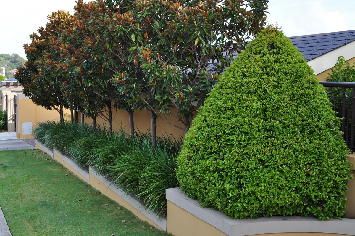 Formal theme garden